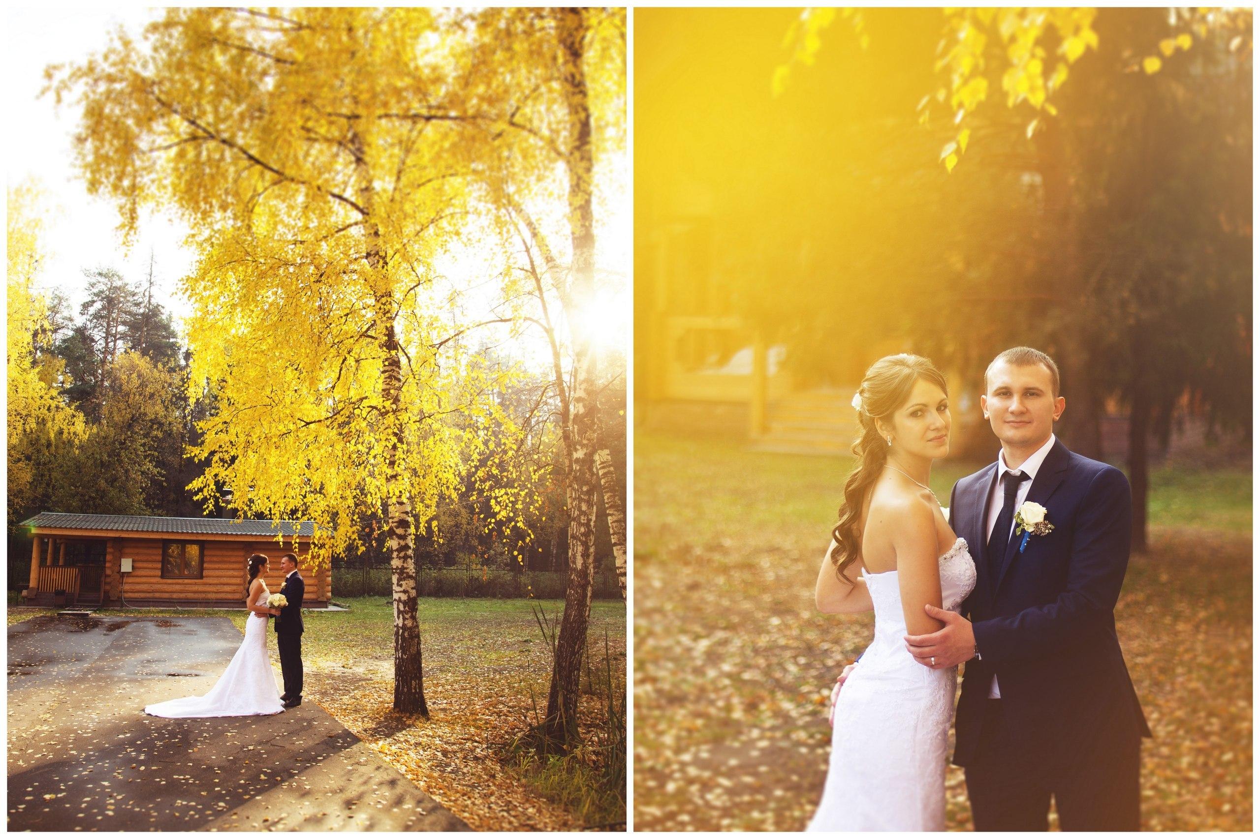 Свадьба осенью октябрь фото