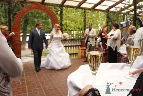 Гости встречают жениха и невесту. - фото 96 Невеста01