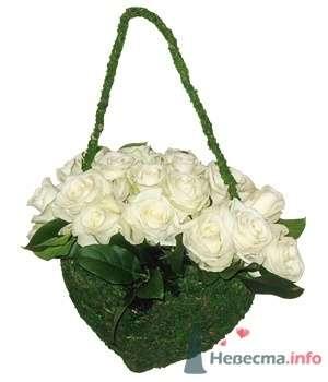 Белые розы - фото 62 Ночь'нушка
