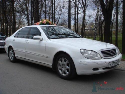 """Мерседес S класс (220Long) 2000 год светлый салон - фото 143 Транспортная компания """"Лимузиновъ"""""""