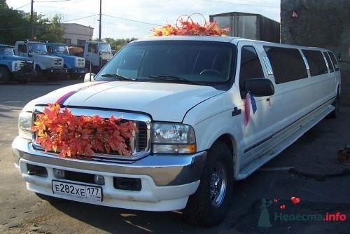 Фото 4820 в коллекции украшения на свадебную машину - Toplim - аренда транспорта