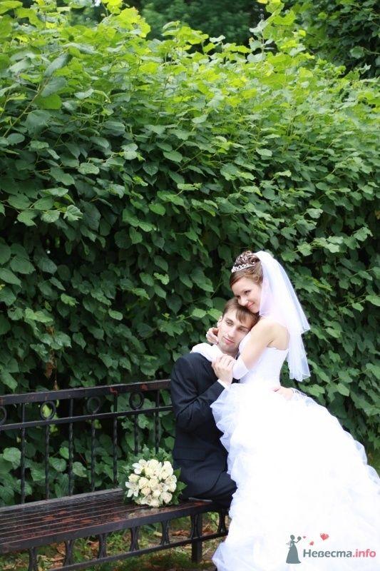 Фото 34565 в коллекции наша свадьба - Настенка
