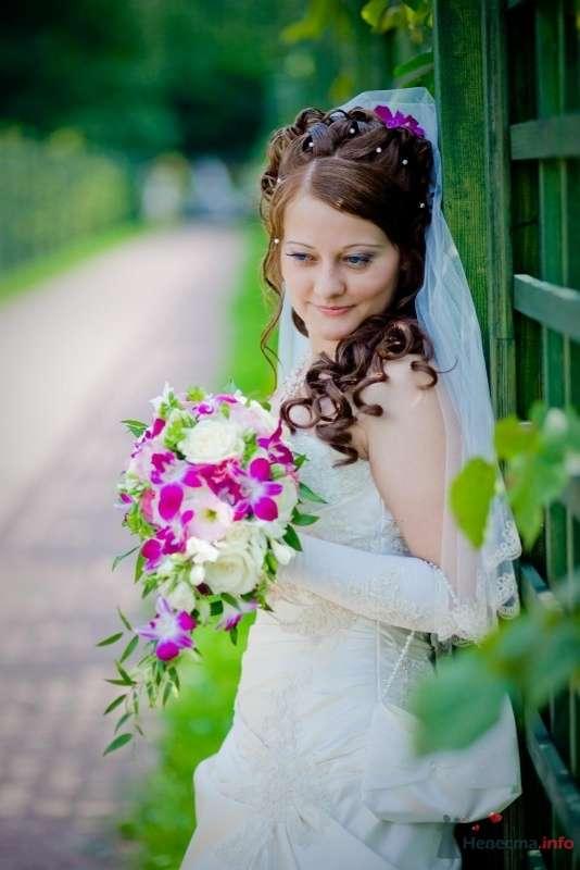 Фото 58369 в коллекции Свадьба - Наталья и Сергей