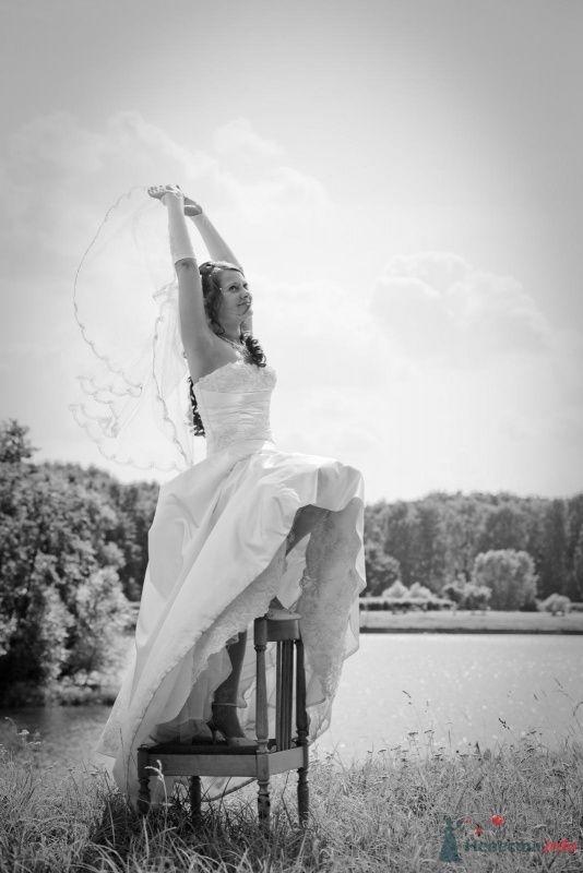 Фото 58409 в коллекции Свадьба - Наталья и Сергей
