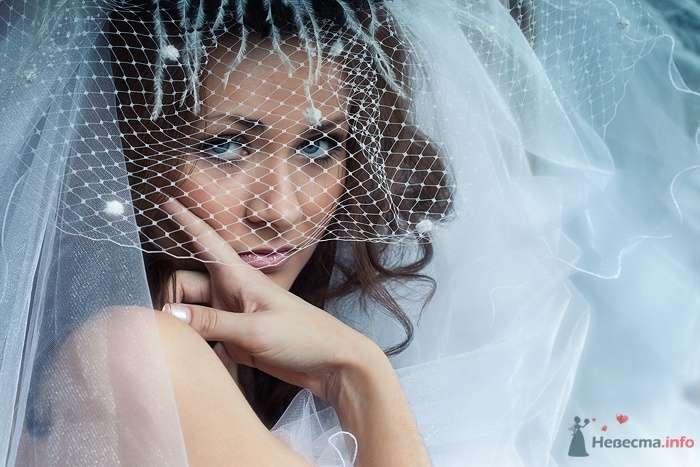 Фото 61195 в коллекции свадебные фотографии - Фотограф Ольга Кедрова