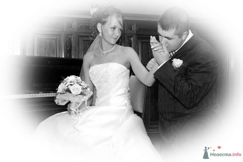 Фото 61521 в коллекции Моя свадьба - Krapiva