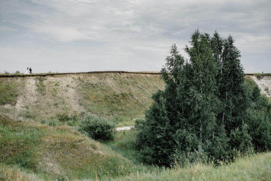 Фото 19555680 в коллекции Портфолио - Фотограф Сергей Бабкин
