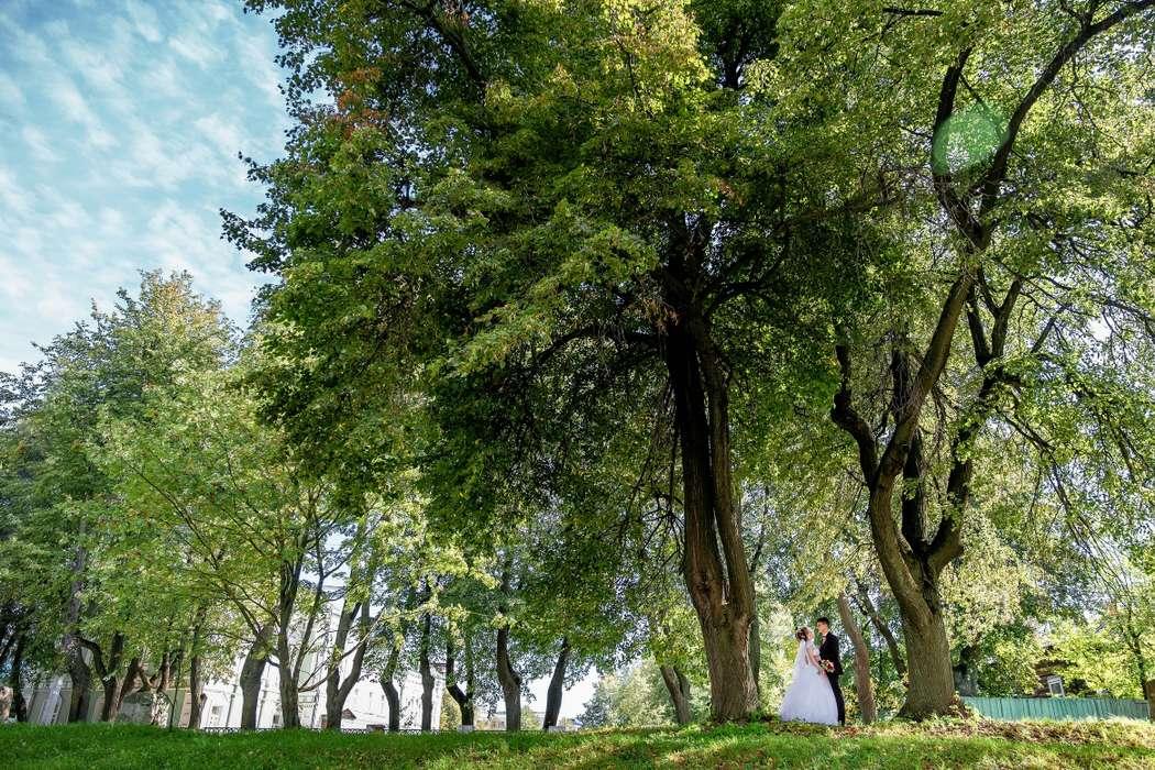 Фото 19553450 в коллекции Свадебное - Фотограф Вадим Великоиваненко