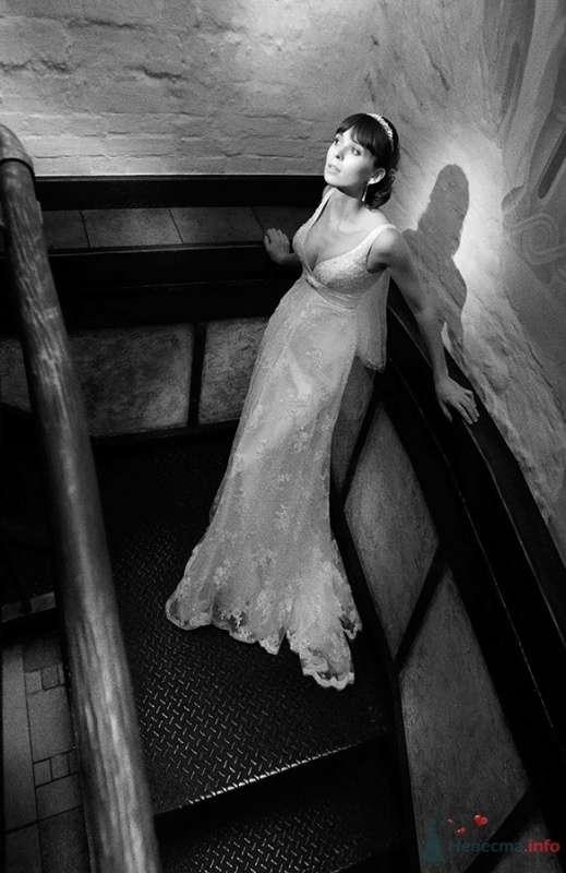 Фото 61654 в коллекции Мои фотографии - Анастасия Колесникова