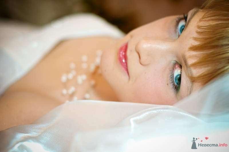 Фото 63815 в коллекции Свадьбы - Фотограф Сергей Алексеев