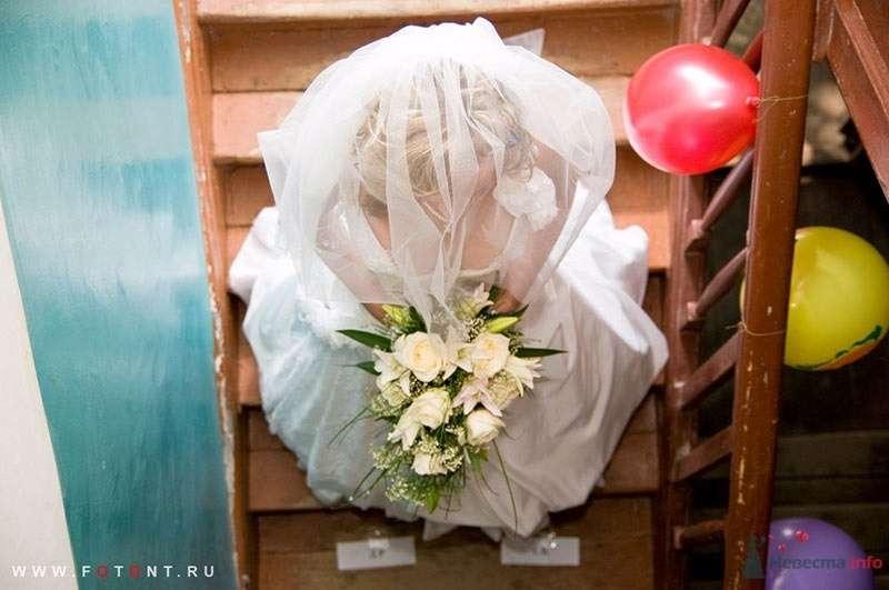 Фото 63828 в коллекции Свадьбы - Фотограф Сергей Алексеев