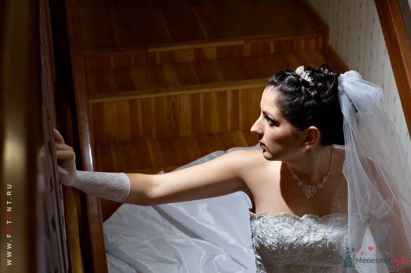 Фото 63829 в коллекции Свадьбы
