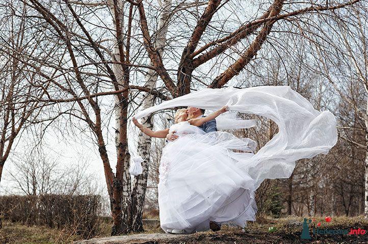 23.04.2010 - фото 92322 Фотограф Сергей Алексеев