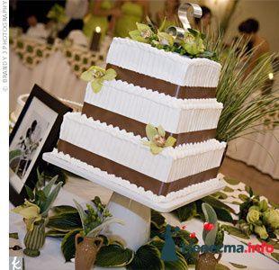 Фото 109042 в коллекции Коричневый торт - natashich