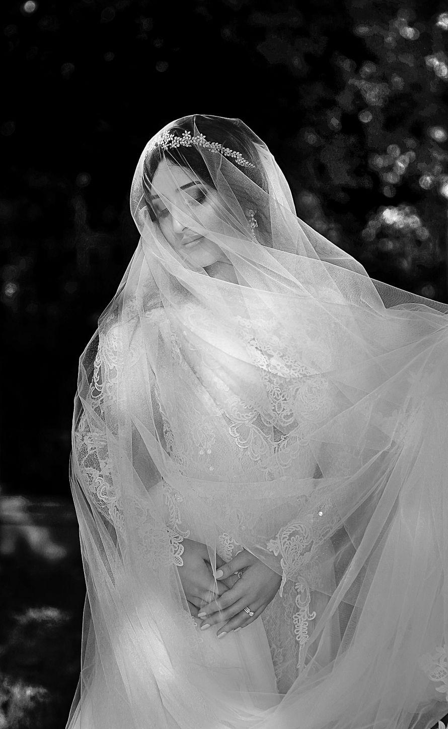 Фото 17233028 в коллекции Портфолио - Фотограф Камила Мирзоева