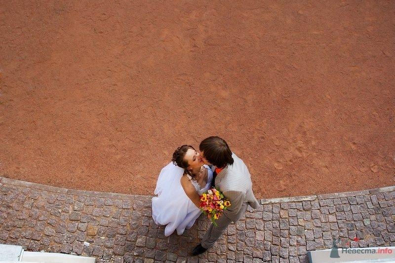 Фото 63780 в коллекции Свадебные фотографии - Невеста01