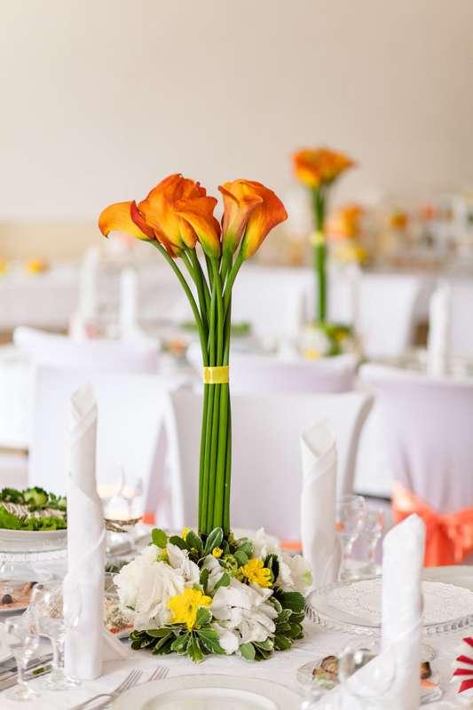 Фото 6563870 в коллекции Портфолио - Wedcraft - свадебный декор
