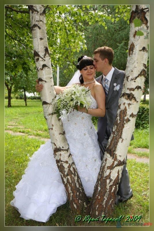 Фото 64116 в коллекции Свадьбы - Cвадебный фотограф Юрий Тарасов