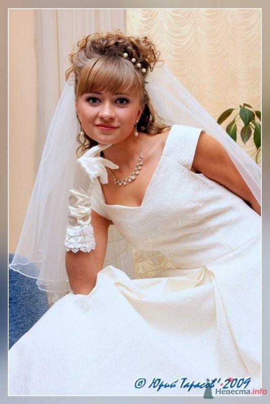 Фото 64119 в коллекции Свадьбы