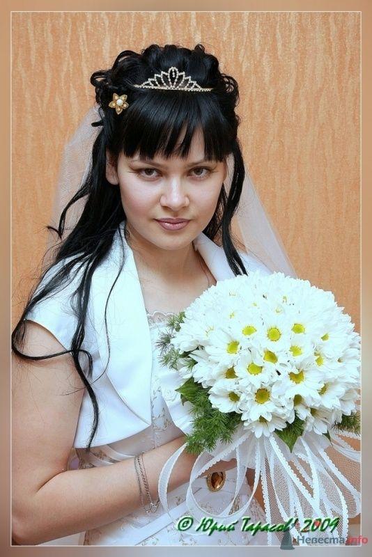 Фото 64135 в коллекции Свадьбы - Cвадебный фотограф Юрий Тарасов