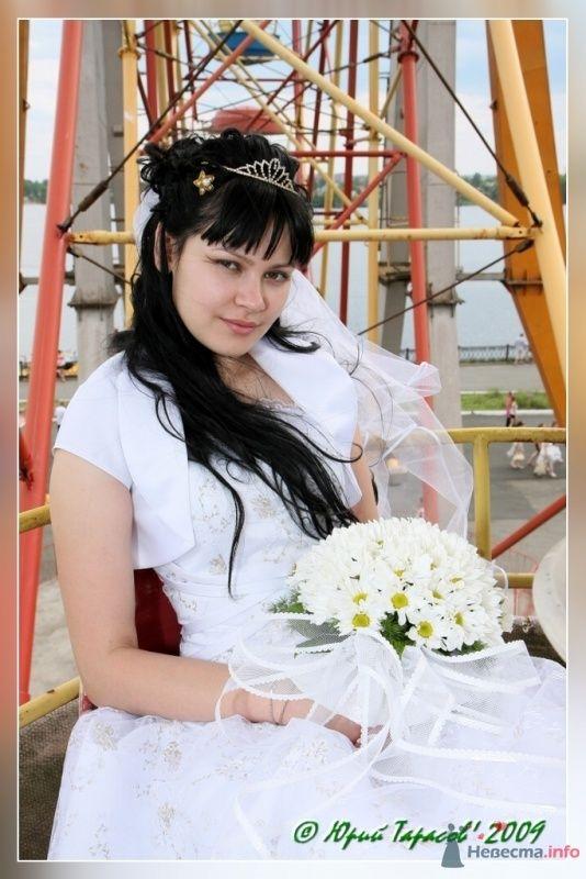 Фото 64139 в коллекции Свадьбы - Cвадебный фотограф Юрий Тарасов