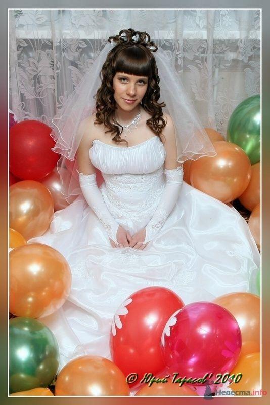Фото 80178 в коллекции Свадьбы - Cвадебный фотограф Юрий Тарасов