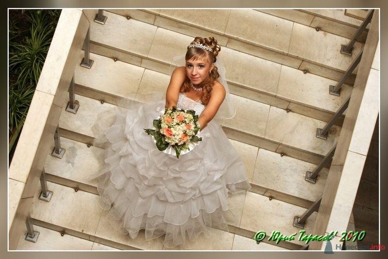 Фото 80221 в коллекции Свадьбы - Cвадебный фотограф Юрий Тарасов