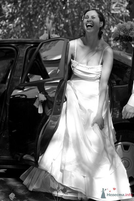"""Свадьба Сёмы и Олеси - фото 66021 Студия """"MAGIQUE"""""""