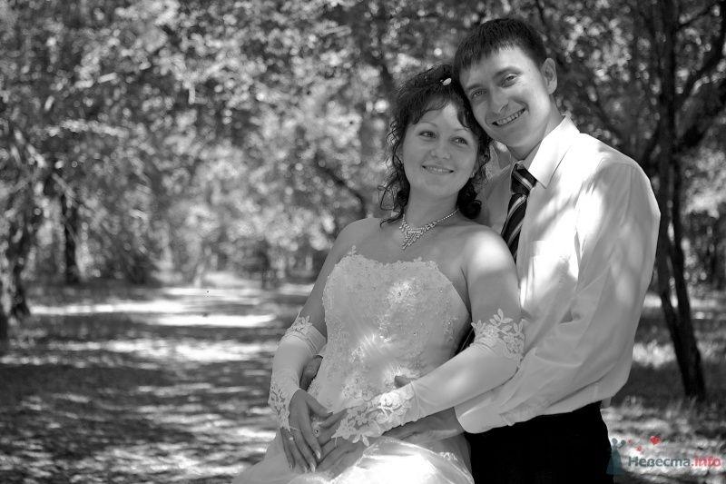 """Свадьба Димы и Светы - фото 66024 Студия """"MAGIQUE"""""""