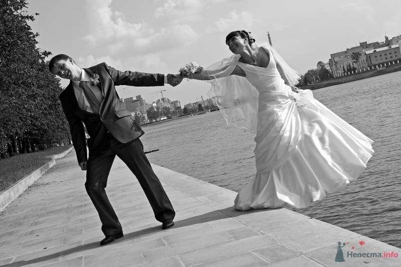 """Свадьба Гены и Анастасии - фото 66029 Студия """"MAGIQUE"""""""
