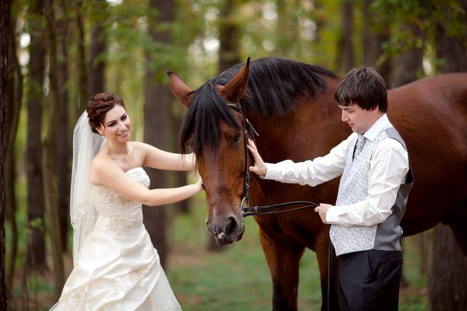 СБОРНОЕ ПОРТФОЛИО. свадьбы и love-story
