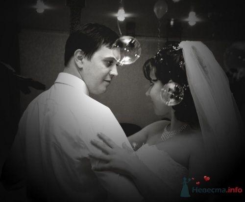 Фото 10933 в коллекции Свадебные фотографии - Фотограф Александр Черноусов