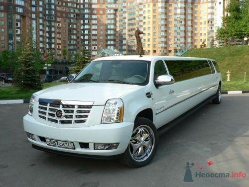 Кадиллак Эскалейд - фото 3646 Cashcar - транспортная компания