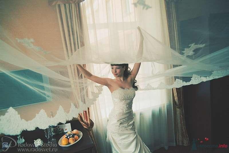 Фото 31277 в коллекции Свадебное фото - Фотограф Радосвет Лапин