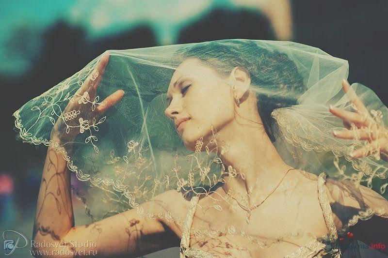 Фото 31421 в коллекции Свадебное фото - Фотограф Радосвет Лапин