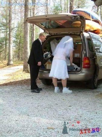 Фото 10812 в коллекции Смешные свадьбы - Ксюня