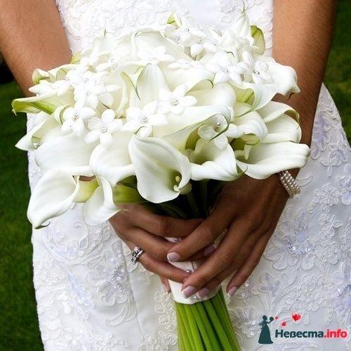 Фото 90142 в коллекции Букет невесты, подружек, и бутоньерка жениха! - Невеста Настенька