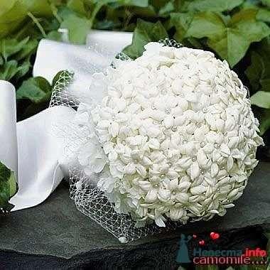 Фото 90193 в коллекции Букет невесты, подружек, и бутоньерка жениха! - Невеста Настенька