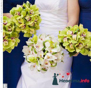 Фото 103275 в коллекции Зеленая свадьба - Невеста Настенька