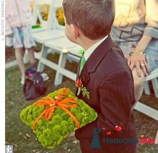 Фото 103331 в коллекции Зеленая свадьба - Невеста Настенька