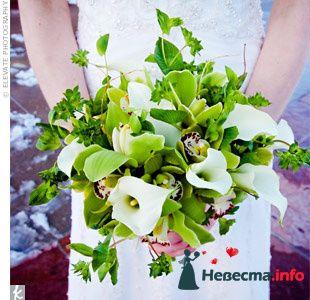 Фото 103340 в коллекции Зеленая свадьба - Невеста Настенька