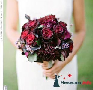 Фото 103351 в коллекции Красная свадьба! - Невеста Настенька