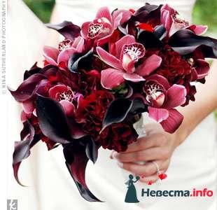 Фото 103354 в коллекции Красная свадьба! - Невеста Настенька