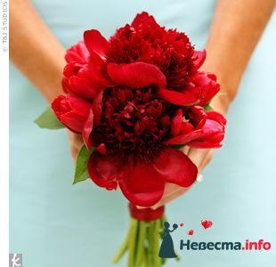 Фото 103361 в коллекции Красная свадьба! - Невеста Настенька