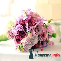 Фото 103420 в коллекции цветочки - леденец (Даша)