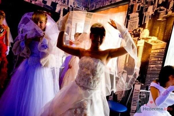 """Фото 69001 в коллекции Свадебный Flashmob 2 """"гламур и брутальность"""" - Организатор торжеств Антон Уткин"""