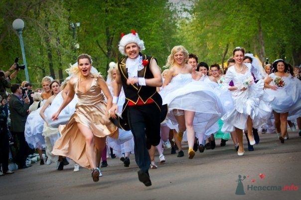 """Фото 69011 в коллекции Свадебный Flashmob 2 """"гламур и брутальность"""""""