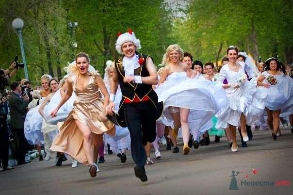 """Фото 69011 в коллекции Свадебный Flashmob 2 """"гламур и брутальность"""" - Организатор торжеств Антон Уткин"""