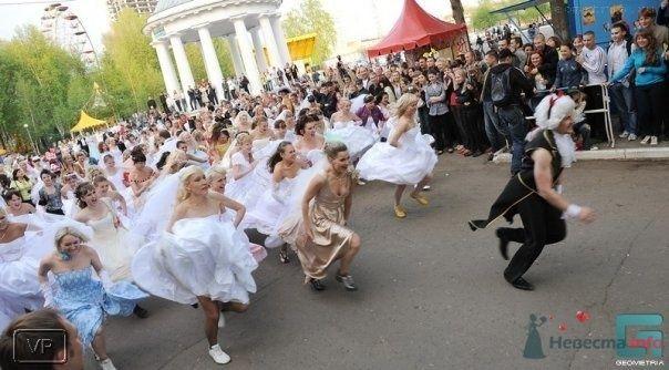 """Фото 69018 в коллекции Свадебный Flashmob 2 """"гламур и брутальность"""""""