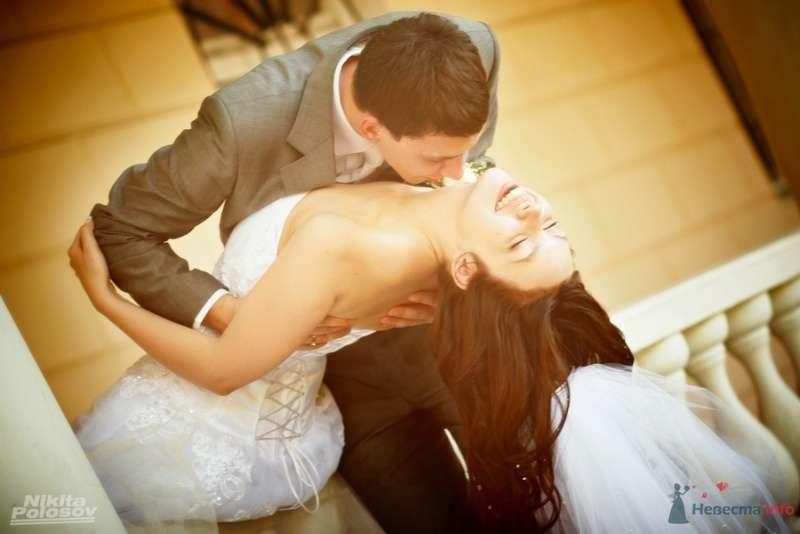 Фото 69591 в коллекции Свадебное портфолио - Свадебный фотограф Никита Полосов